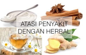 atasi penyakit dengan herbal